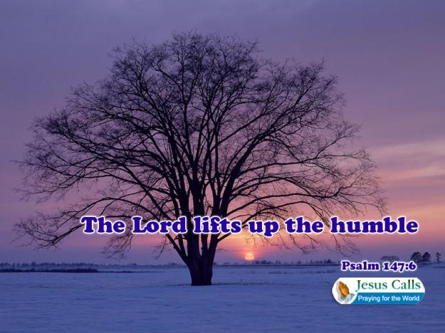 the humb