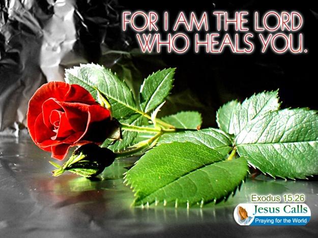 who heals you