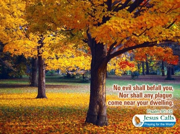 no evil shall