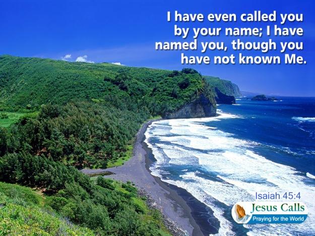 i have named you