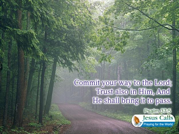 trust also in Him