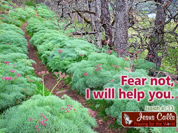 fear not i will help you